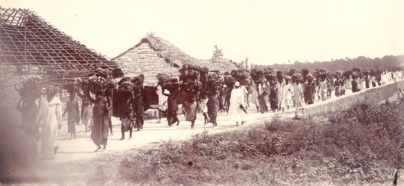 photographe zanzibar 1890