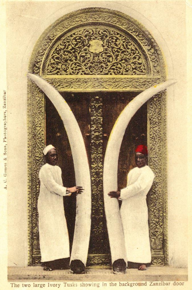Four Antique Postcards Of Zanzibar Omani Doors And Two